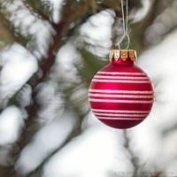 christmas by cloe-may