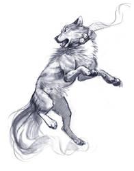 Wolf by TehChan