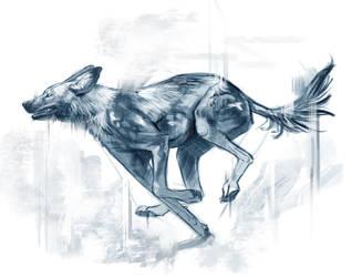 Wild African Dog by TehChan