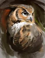 OwlSpeedPainting by TehChan