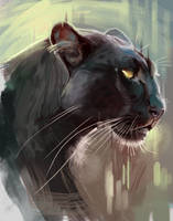 Panther Painting Study by TehChan