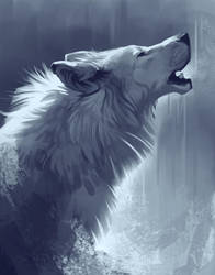 Wolf Drawing by TehChan