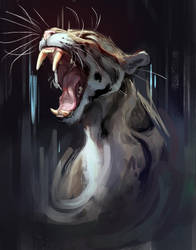 Clouded Leopard by TehChan