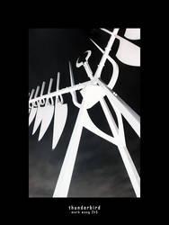 thunderbird by praetorianguards
