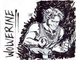 Wolverine Sketch by Renny08