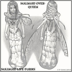 Solinoid Over-Queen by theschell