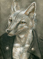 Fox in a Jacket by apricotjackal