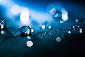 Lights Play by iammaimai