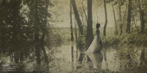Ophelia VI by SlevinAaron