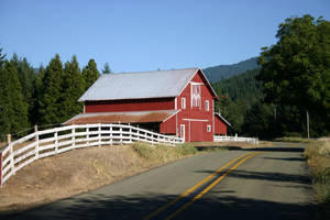 Barn, Azalea, Oregon by pegrowe62