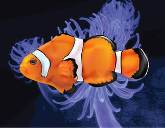 NEMO the CLOWN FISH by dreamlord3