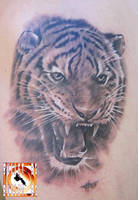 Tiger by bullettattoobg