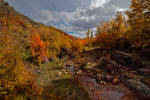 Zelenogorie Mountains (GreenHills)... 2 by my-shots