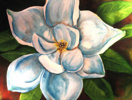 Magnolia by bonbon3272