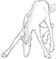 Free Unicorn Foal Lineart by bonbon3272