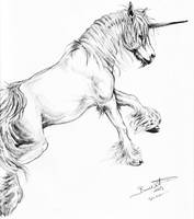 Unicorn Sketch2 by bonbon3272
