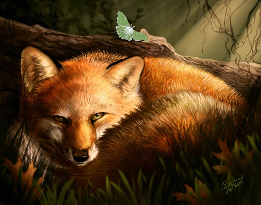 Fox and Moth by bonbon3272