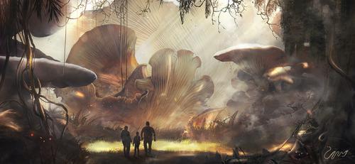 Mushroom Land by stgspi