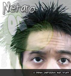 My 27th ID Thing by Netaro