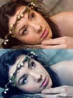 Nymph - Comparaison by MaliciaRoseNoire