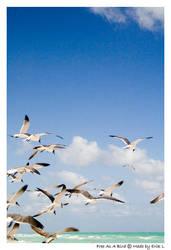 Free As A Bird by SufferMan