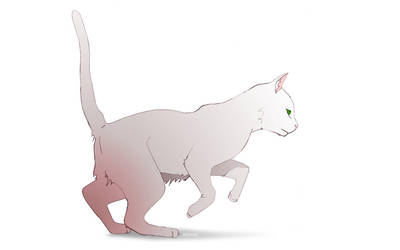 Cat by EnigmaResolve