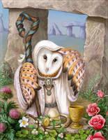 owl druid by napluvayka