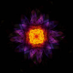 Water Lily Kaleidoscope by Nimily