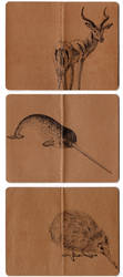 three moleskines by KellyCDB