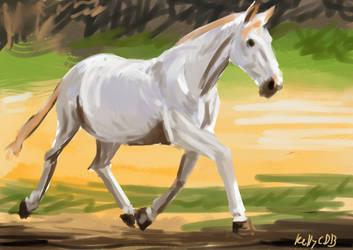 animal study speedpaint by KellyCDB