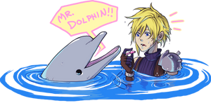 MR DOLPHIN by Ahvia