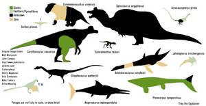 Feathers vs Scales vs Pycnofibres vs Skin by aGentlemanScientist