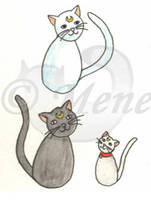 Cats - Artemis, Luna and Diana by mene
