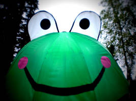 Frog Umbrella by smilejustbcuz