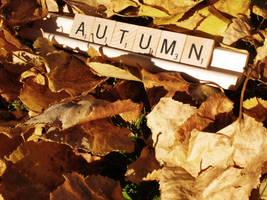 Autumn by smilejustbcuz
