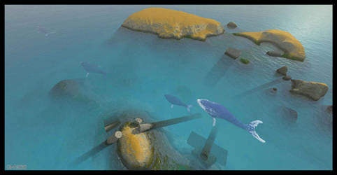 La passe des baleines by GabrielM1968