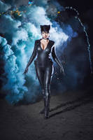 CatWoman DC Comics Batman Arkham Knight Injustice by AGflower