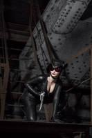 CatWoman DC Comics Batman Arkham Knight Injustice by AGflower