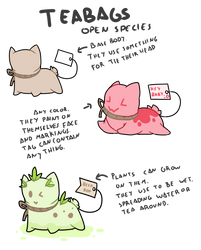 OPEN SPECIES - Teabags by Ayinai