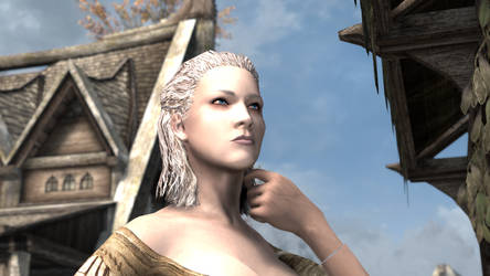 You can't stand the sight of a strong Nord woman? by pmcognn
