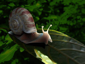 Snail on Leaf by playmobil