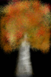 trees in fall by AfroFCP