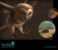 East Bay Animals by BrianLukArt