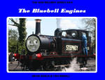 NRWS no.6 The Bluebell Engines by DBurch01