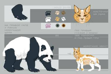 Panda/Cat refsheet by Moldovorot
