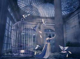Trapped like a bird by jiajenn