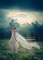 Blue field by jiajenn