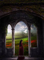 The door by jiajenn