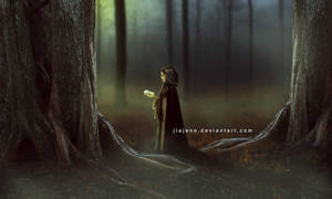 Mist by jiajenn