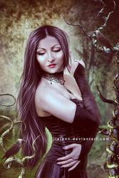 The Lady by jiajenn